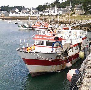 De la mer à la criée - Port de Pêche d'Audierne